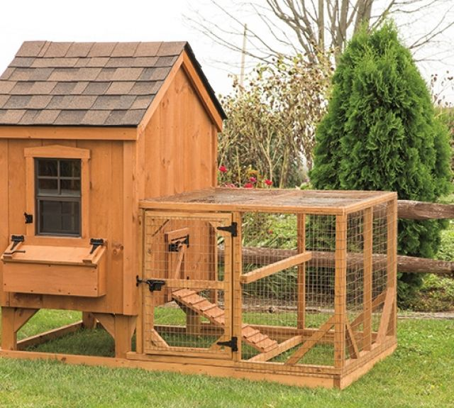 Chicken Coops, Small Animal Shelters